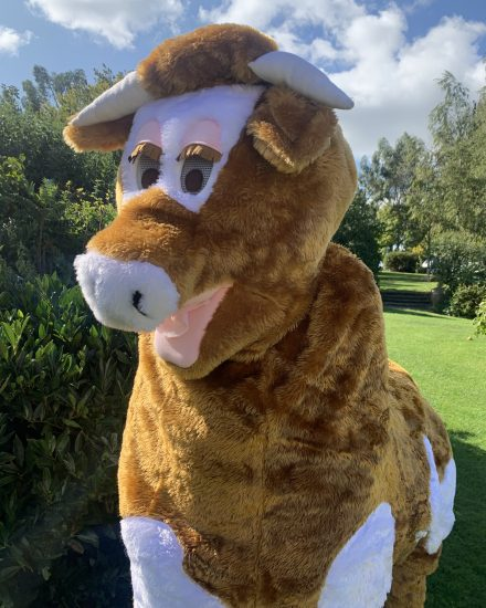 Hire a Pantomime Cow Costume Brown//White